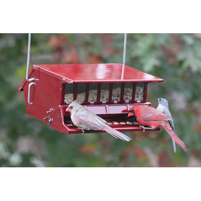 Reflective Red Birds Delight Squirrel Resistant Feeder