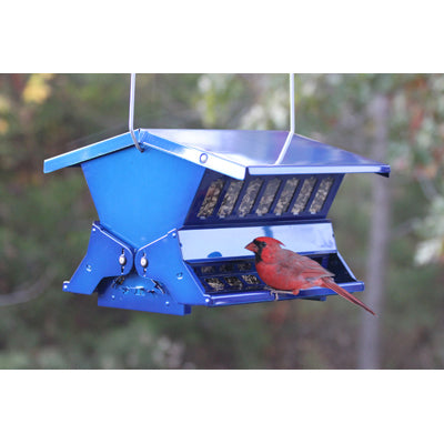 absolute II squirrel resistant feeder