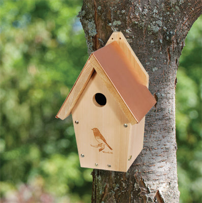 Woodlink Coppertop Bluebird House