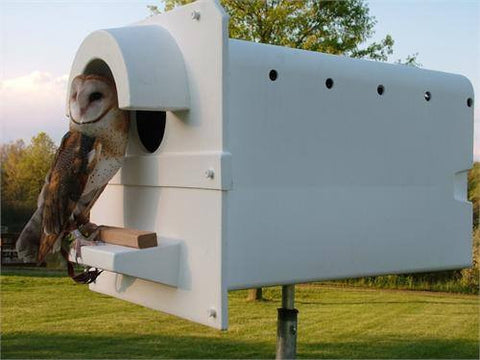 Barn Owl House - Pole Mounted