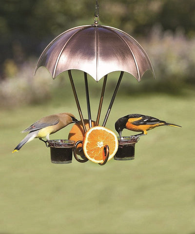 Woodlink Coppertop Oriole Feeder