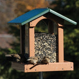 Recycled Large Premier Feeder