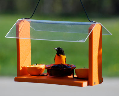 Woodlink Going Green Recycled Oriole Feeder