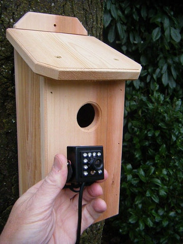Cedar Birdhouse with HD Camera