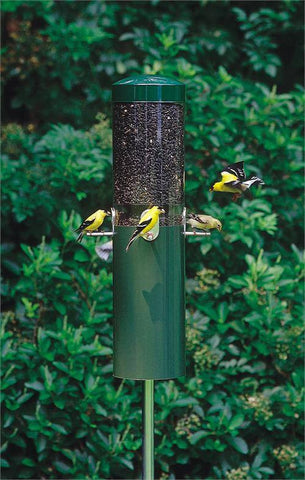 Birds Choice #NP431 Classic Feeder w/ Baffle and Pole