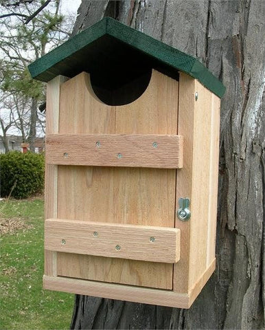 Looker Screech Owl House at www.wildbirdstoreonline.com