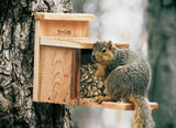 Woodlink Squirrel Feeder