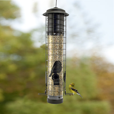 Chickadee Squirrel-Resistant Tube Feeder