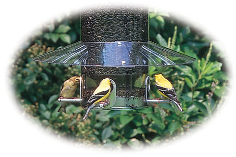 Birds Choice Classic Feeder Weatherguard