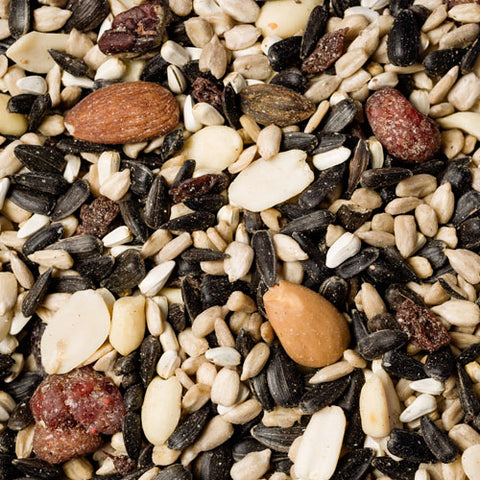 Deluxe Bird Seed Mix with Fruit & Berries