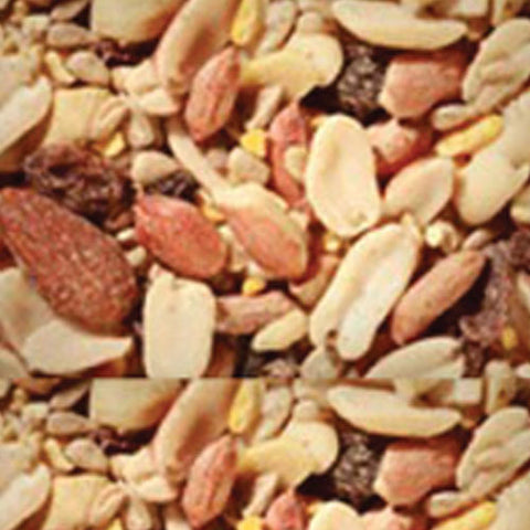 Deluxe Woodpecker, Jay, Flicker Blend- Bird Seed