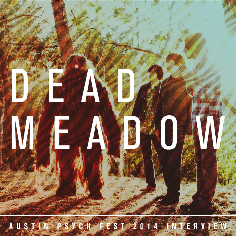 Dead Meadow Official APF 2014 Interview