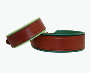 leather dog collar with color padding
