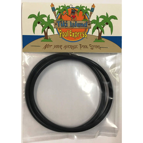 2 Pack Pentair R172009 VITON O-Rings for Chlorinator Rainbow Models 300/320