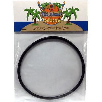 Hayward VITON CLX200K Pool Chlorinator Lid O-Ring Replacement