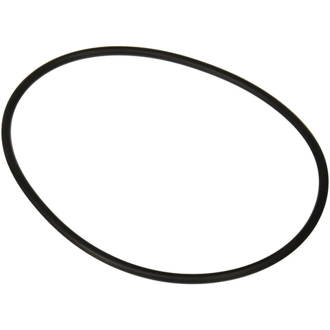 Compatible with Zodiac Jandy R0480300 Backplate Seal O-Ring