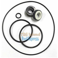Aquaflo Xp2 SALTWATER Pump Shaft Seal & O-ring Kit