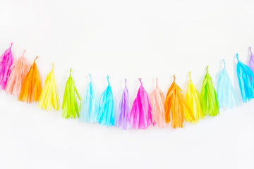 Bright Rainbow Tassel Garland