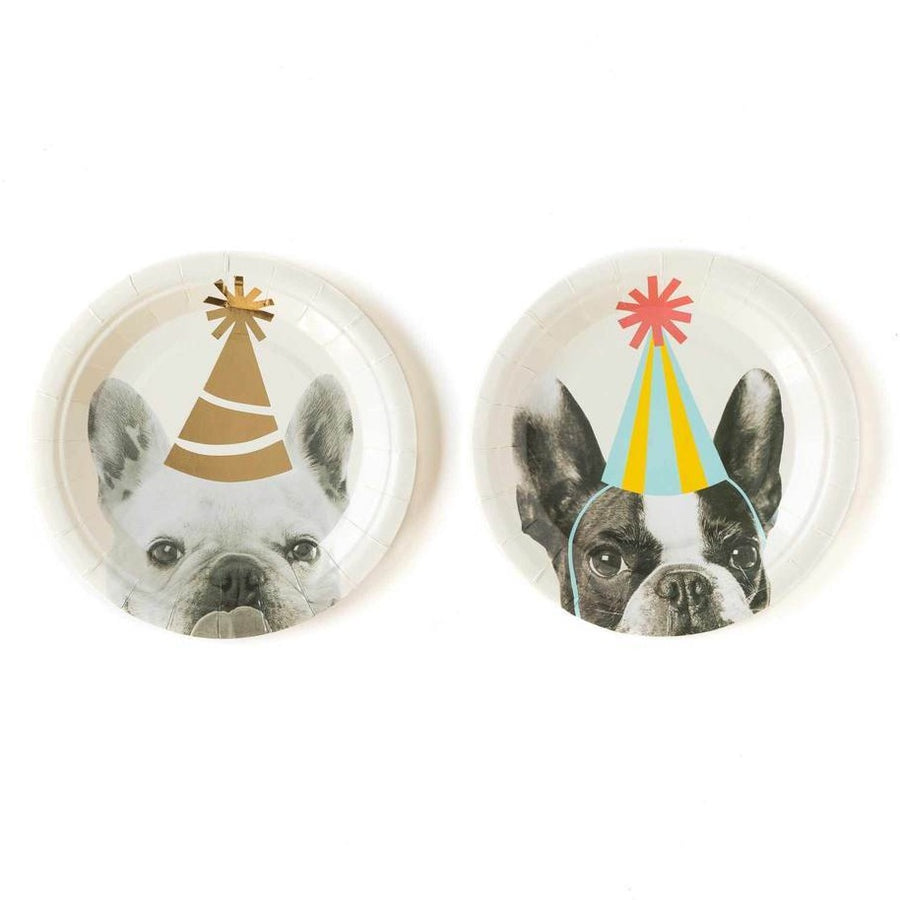 party hat dog plates