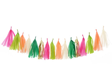 Cactus Party Tassel Garland