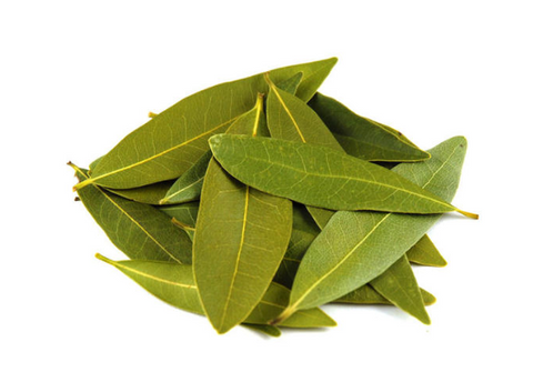 Bay Leaf Essential Oil Healing Qualities