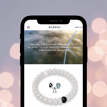 Send friend email - photo of phone showing Carbon Lokai page