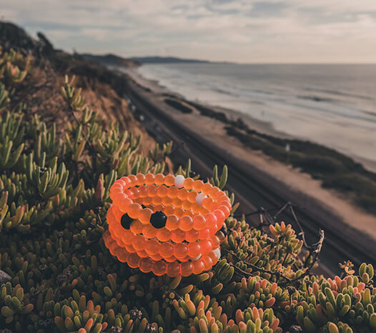 Stack of orange silicone beaded bracelets sitting on plants with coastline in the background.
