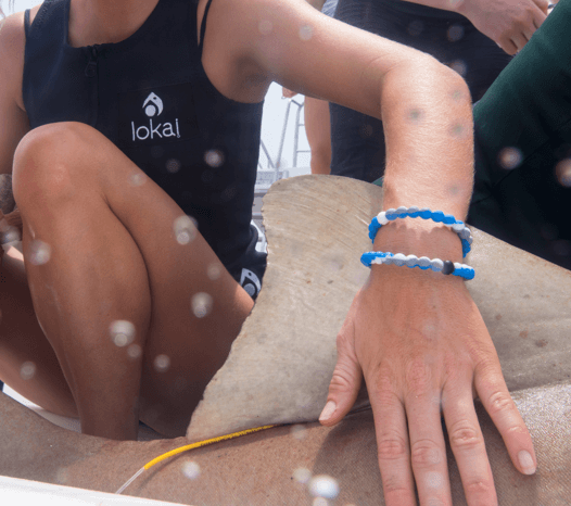 Woman wearing blue, white and gray swirl silicone beaded bracelets on wrist while touching shark fin.