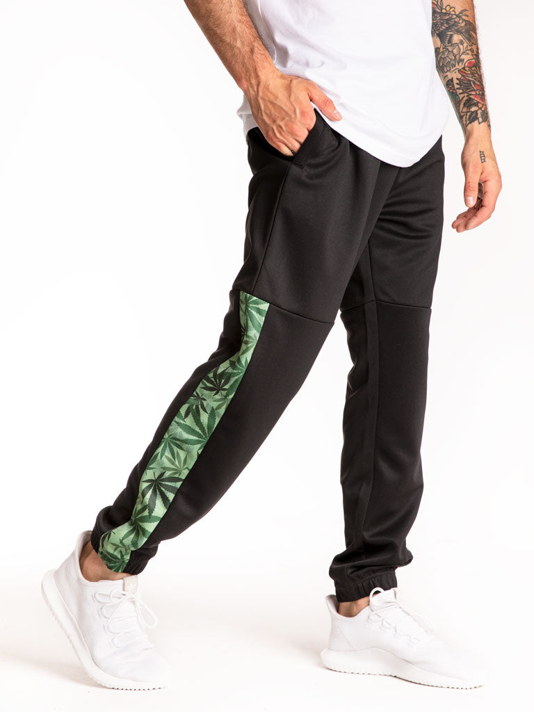 The Hustle Gang Legalize Track Suit Joggers in Black