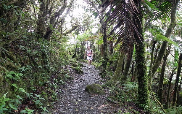 Hiking in the Caribbean - Part 3 (Puerto Rico)