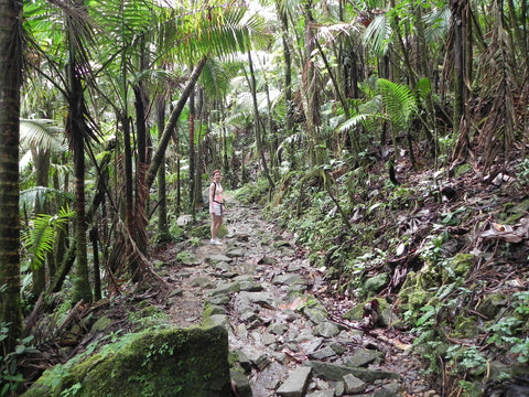 Hiking in the Caribbean - Hike Puerto Rico and protect your head from the sun
