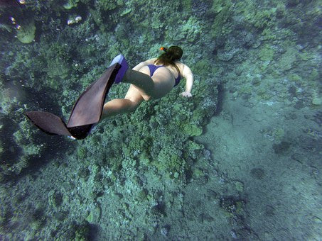 Florida's Biscayne National Park Snorkeling - Urban Canairie