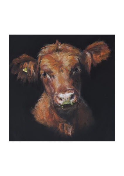 A Fine Art  Print of ' wee Hamish '