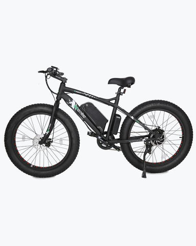 Ecotric 36V 500W Fat Tire Beach Snow Electric Bike