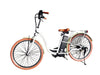American Electric Wyndfly 36V 350W Step Through Electric Bike