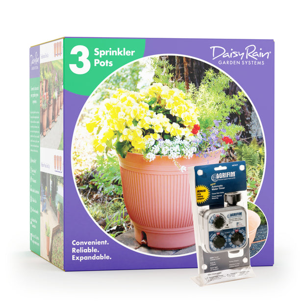 Daisy Rain Three Pot Kit with Timer