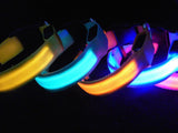 LED illuminated Dog Collars