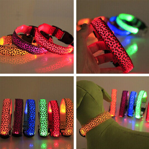 Leopard LED Safety Dog Collar