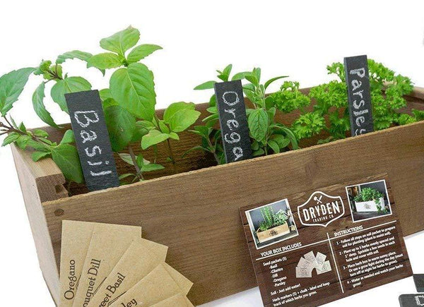 Garden Slate Plant Markers - Set of 5 + Chalk Pen