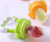 Baby Pacifier Fresh Food Nibbler