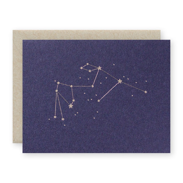 Zodiac: Aquarius Greeting Card