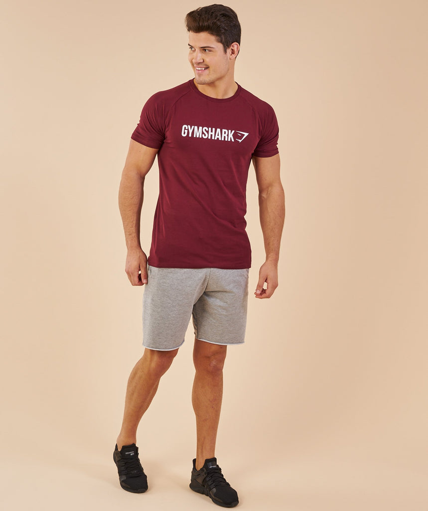 Gymshark Apollo T-Shirt - Port/White 1