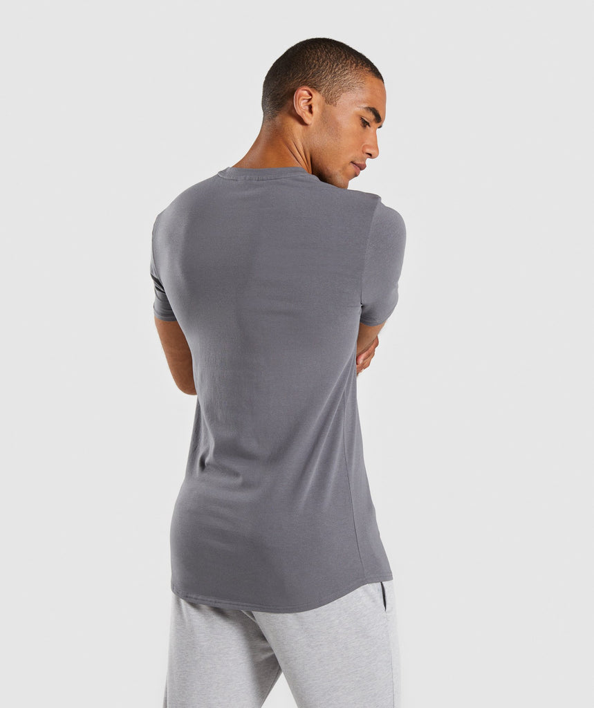 Gymshark Ark T-Shirt - Smokey Grey 2