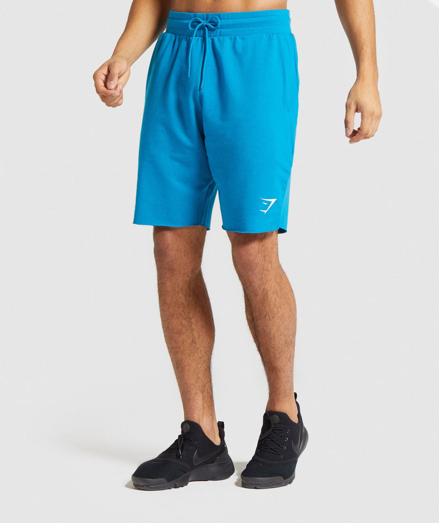 Gymshark Critical Shorts - Light Blue 1