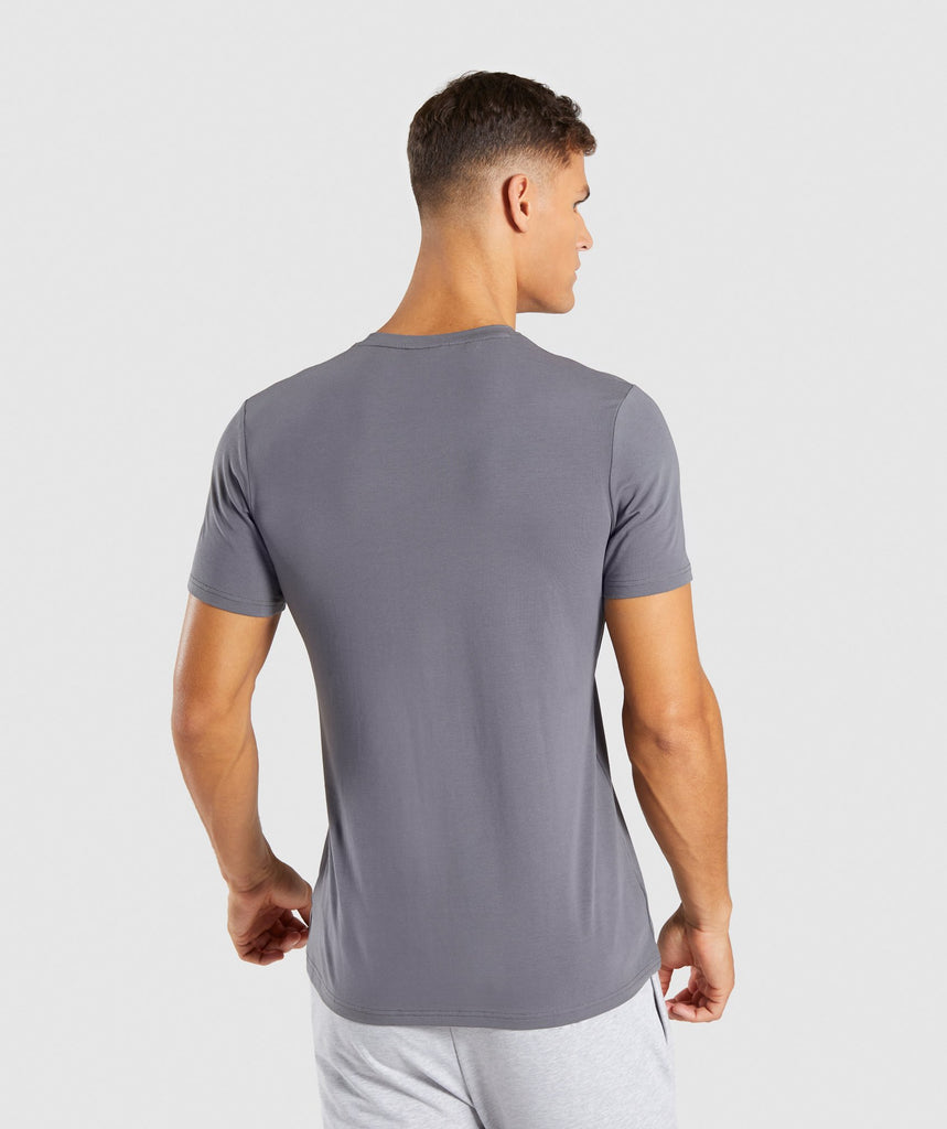 Gymshark Legacy T-Shirt - Smokey Grey 2