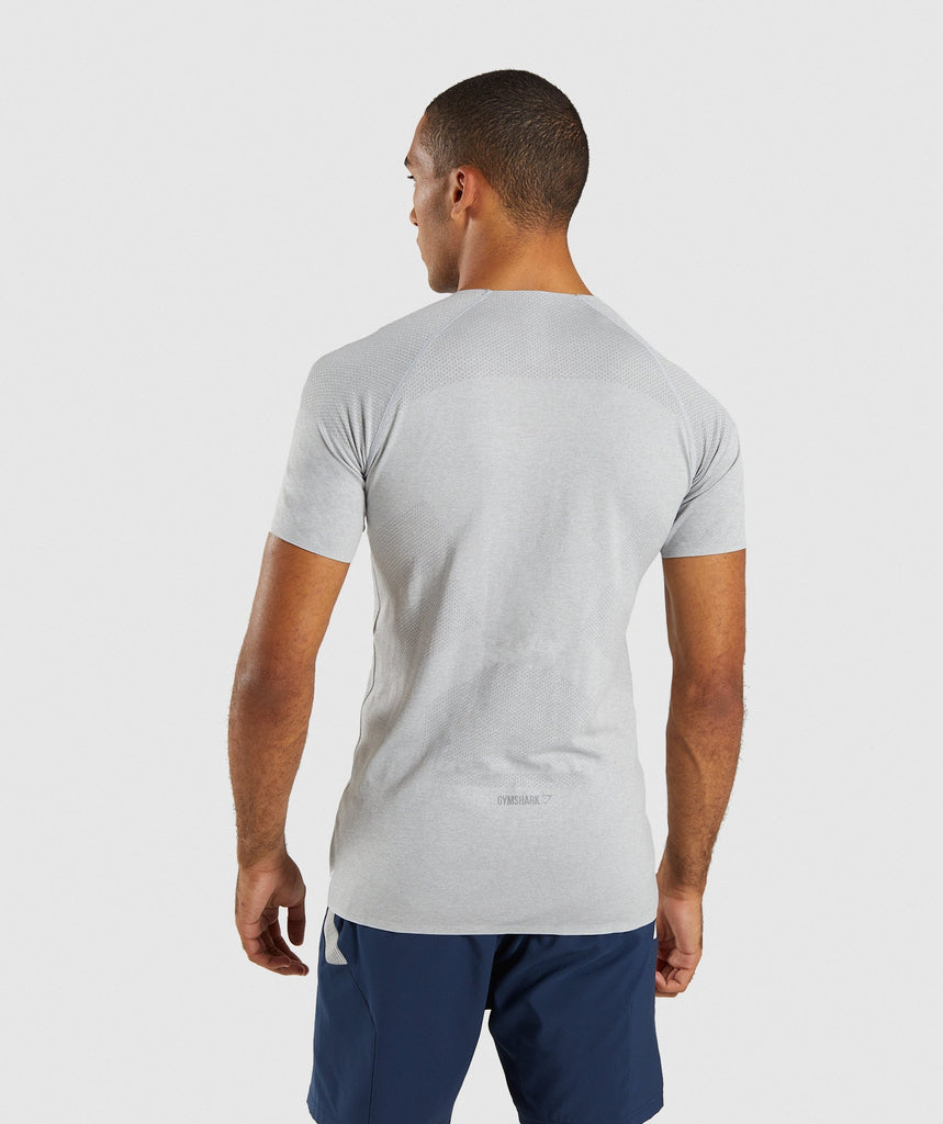Gymshark Shadow Seamless T-Shirt - Light Grey Marl 2