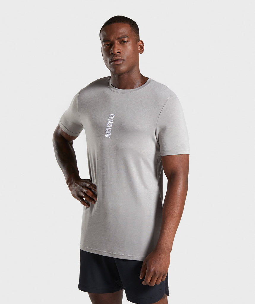 Gymshark Shadow T-Shirt - Grey 1