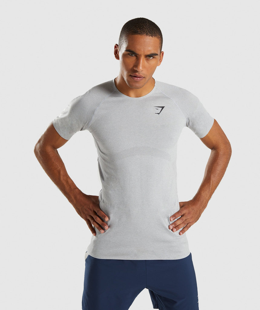 Gymshark Shadow Seamless T-Shirt - Light Grey Marl 1