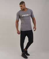 Gymshark Apollo T-Shirt - Slate/White 7