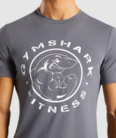 Gymshark Legacy T-Shirt - Smokey Grey 11